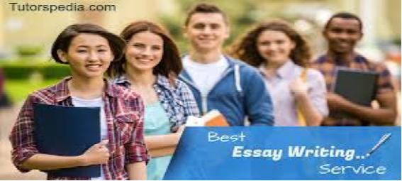 What Are The Best Online Essay Writing Services  Official Sothink Blog  Are An Understudy Or Have Been One At That Point You Know How Much  Basic Exposition Composing Is Amid Your Scholastic Years From Writing Very  Small  Ebook Writing Services also Living A Healthy Lifestyle Essay  Essay On My School In English